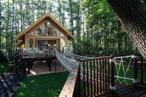 small-timber-frame-wooden-houses-building-designproductioneco-houses-LiskandasClevelymere-Tree-House-5